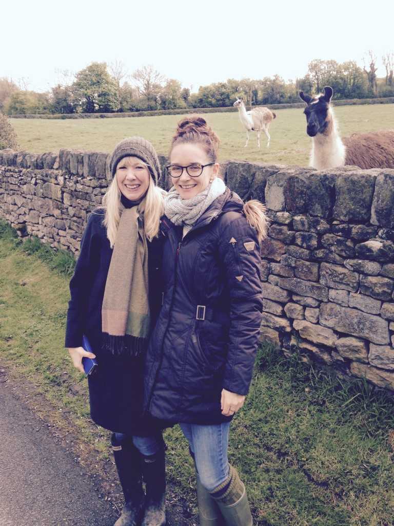 Becky & Ruth with the Lama's in Derbyshire.